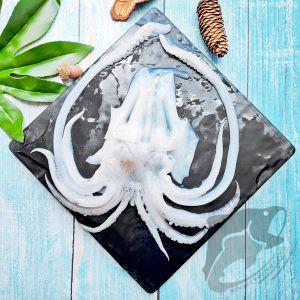 Soft Cuttlefish Tentacle Frozen