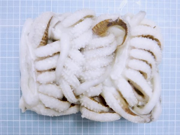 Cuttlefish Tentacle