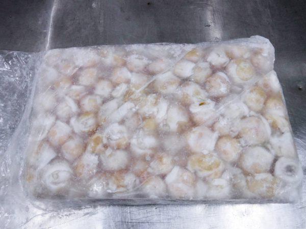 Cuttlefish Mouth frozen