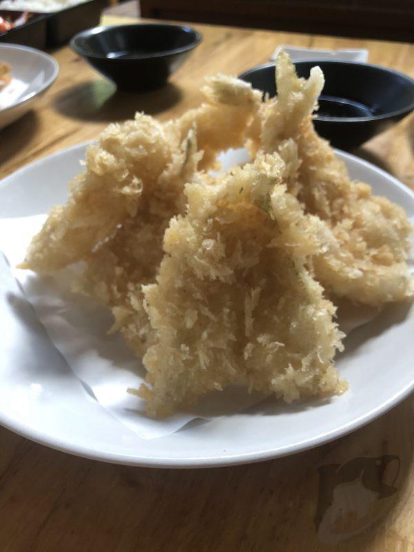 KISU HIRAKI ปลาทราย