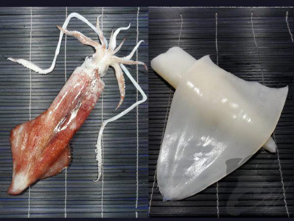 Squid Fillet Vacuum